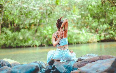 Yoga: molti rami, un'unica radice.